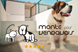 Monte dos Vendavais - Hotel for cats and dogs